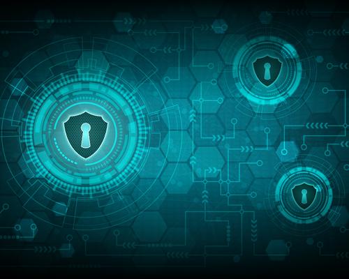 Network Vulnerability Assessment meaning